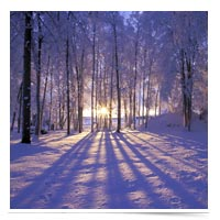 Image of winter scence
