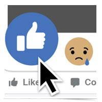 Facebook thumbs up and sad emoticon image.